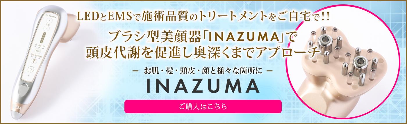 INAZUMA (イナズマ)